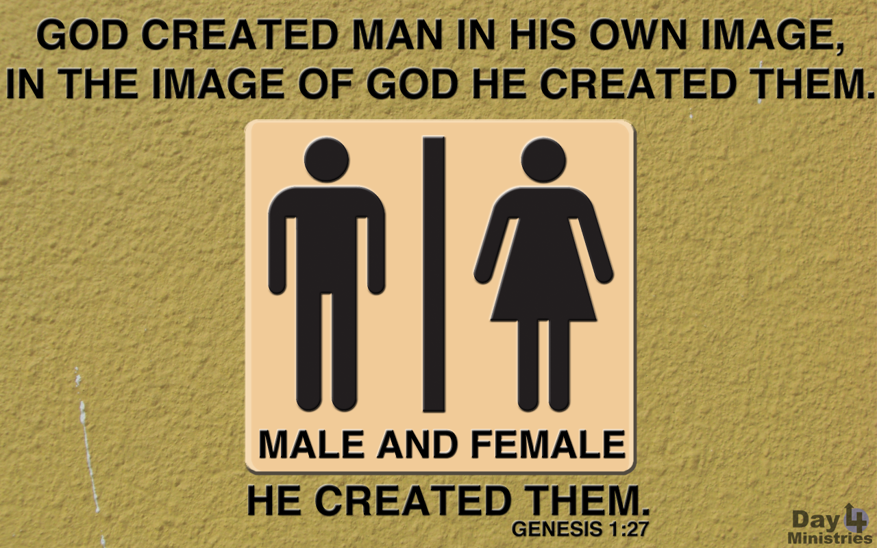 Image result for genesis god created them male and female